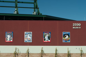 Chicago Cubs baseball card images outside Cubs Park Spring Training Stadium in Mesa, Arizona.