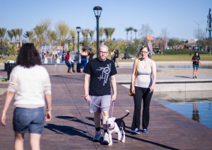 Couple walking a dog at Mesa Riverview park in Wrigleyville West.